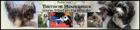 tibeterforum-banner1